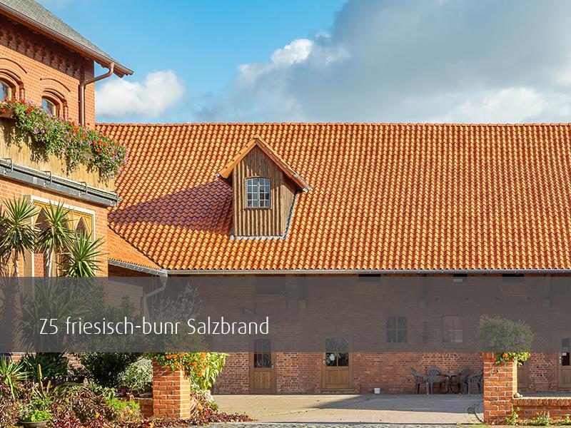 Z5 friesisch-bunt Salzbrand Sonderserie